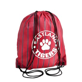 Dressy Drawstring Backpack - Stripes