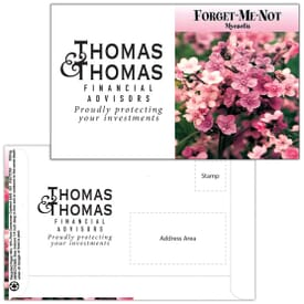 Mailable Series Seed Packet- Forget-Me-Not Pink