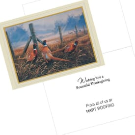 Thanksgiving Pheasant Greeting Card